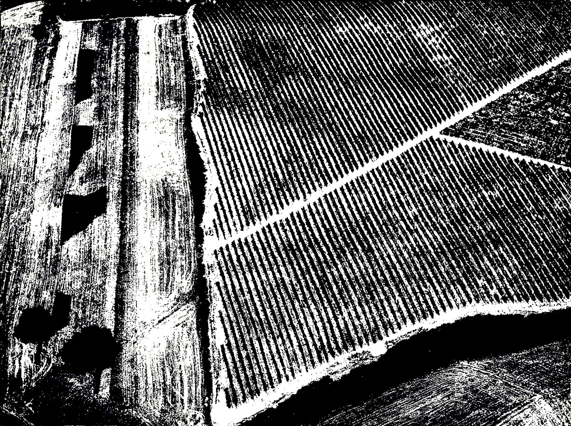 riqualificazione. le campagne fotografate da Giacomelli, fonte di ispirazione per le scelte progettuali delle sistemazioni a verde, delle aree interessate dall'intervento di riqualificazione.